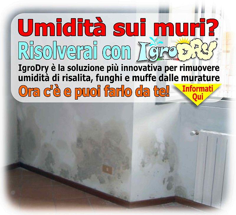 IgroDryhome